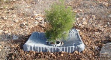 מגן העצים של חברת טל-יה